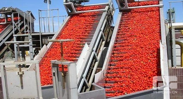安哥拉番茄酱生产线(含蒸发器)