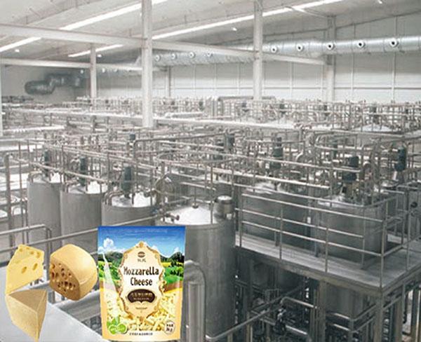 无水乳脂生产线